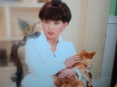 野際陽子と賀来千香子が徹子の部屋に出演!あのドラマの話も!